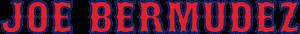 Joe Bermudez Logo